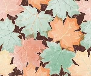 Colori di tendenza autunno/inverno 2013